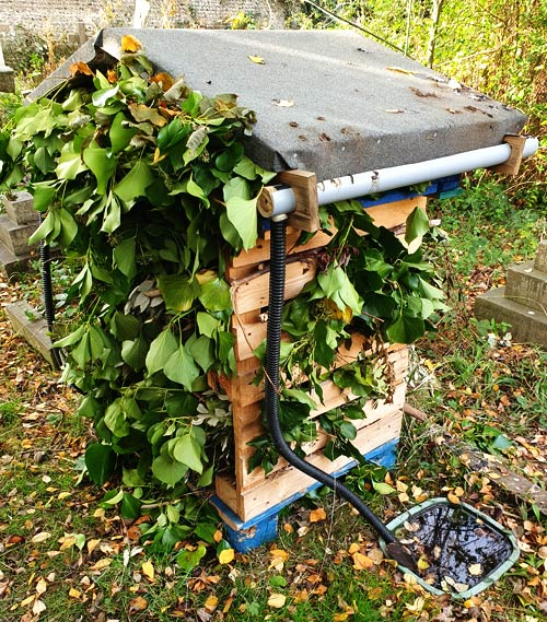 Heene Cemetery's southern bug hotel in winter dress, protecting its residents against the cold.