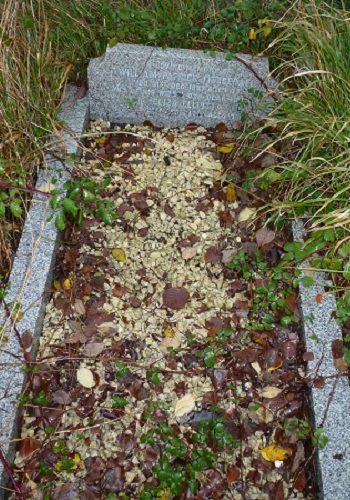 Photograph of headstone for WilliamFitzgerald
